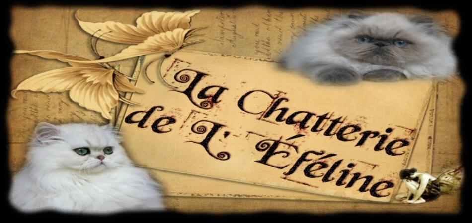 La Chatterie de L'éféline