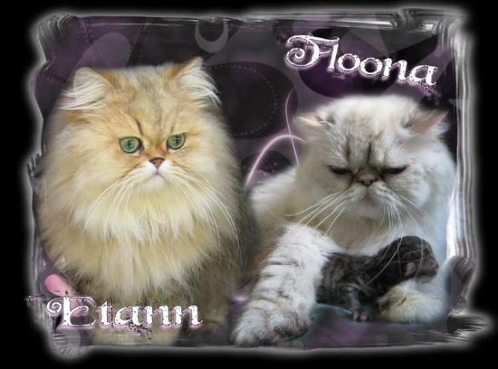 etann-floona-1.jpg