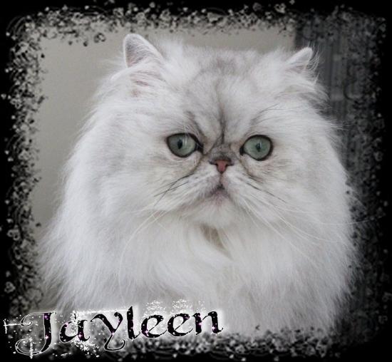 Jayleen 3 ans