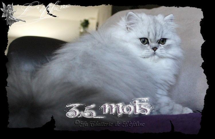Maëllie 3,5 mois